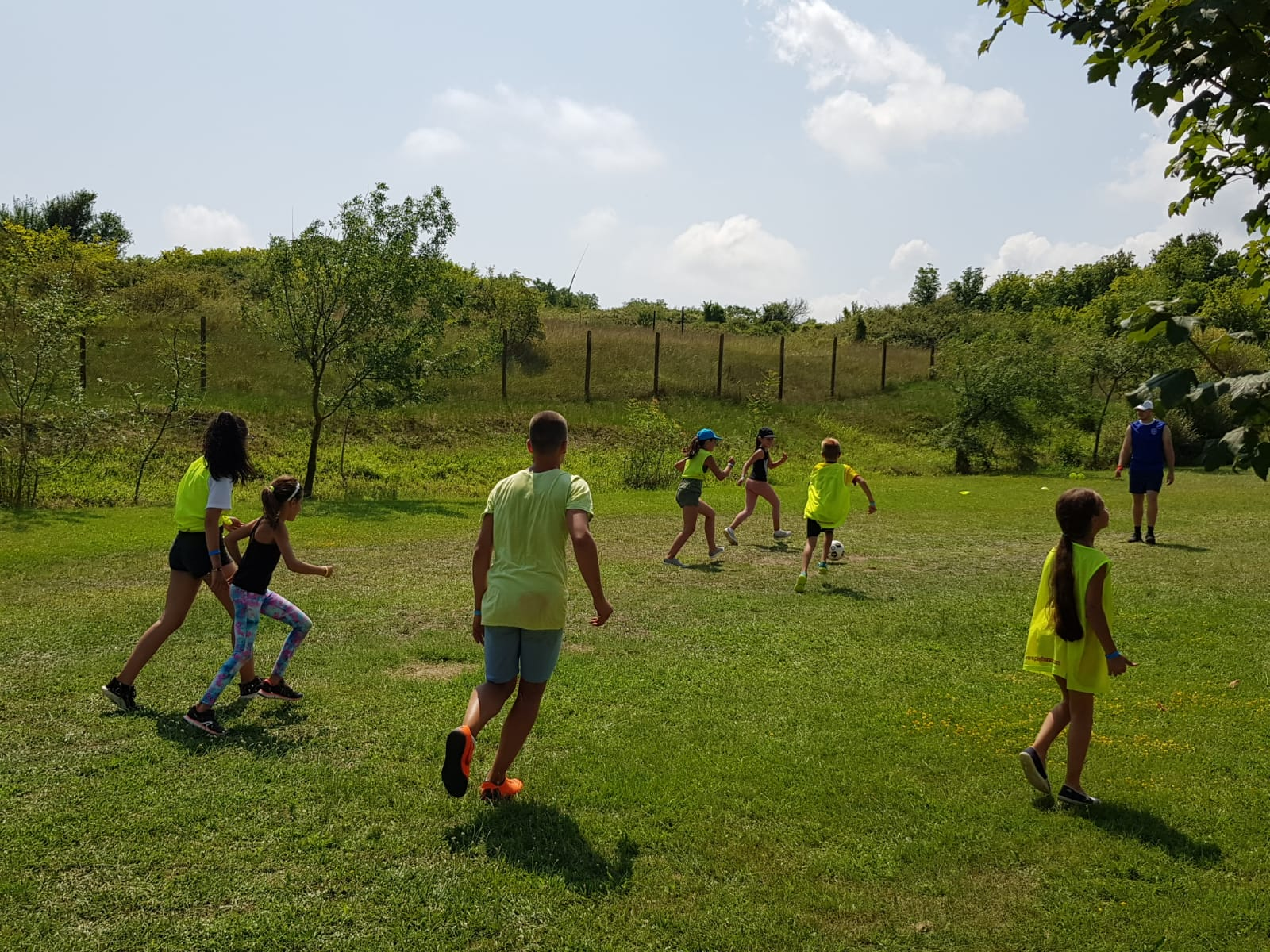 Z camp, day 14 - a frisbee game on grass field teams