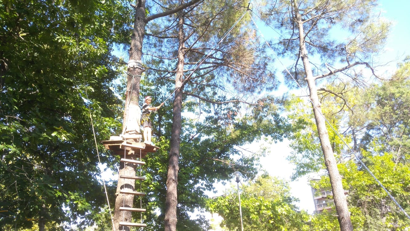 Language Camp for kids Bulgarian Seaside Z camp, Day 21 - X-Challenge adventure park - a boy descends with a rope like Tarzan from the jungle