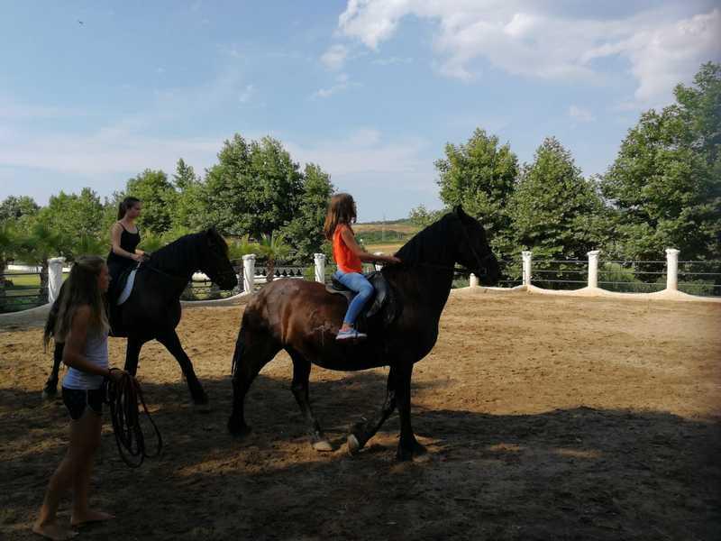 4-z-camp-2019-седмица2-ден2-конна-езда
