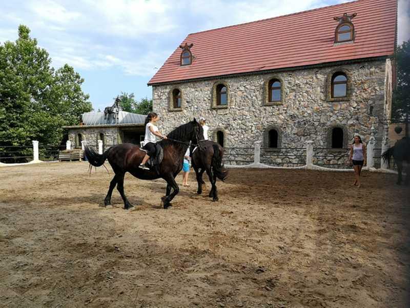 7-z-camp-2019-седмица2-ден2-конна-езда